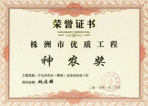 2015-16年度株洲市优(神农奖)项目经理证书(沪昆高铁站连接线姚应麟)